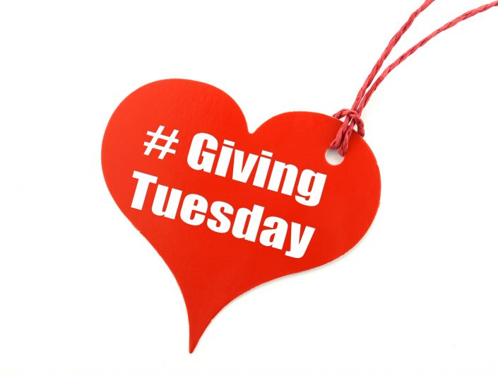 Thai-Ginger-Giving-Tuesday-Get-Involved-Community